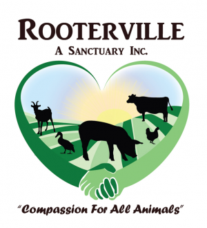 welcome_logo_Rooterville-Logo-HR_2_.png